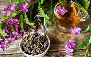 Иван-чай-как часто можно пить?
